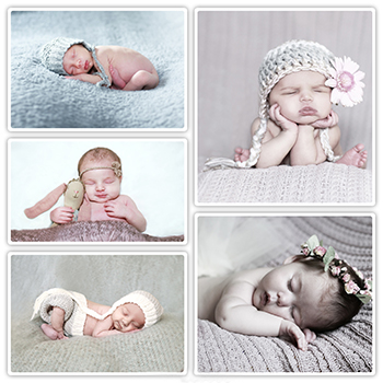 Collage of Newborn Photography sessions