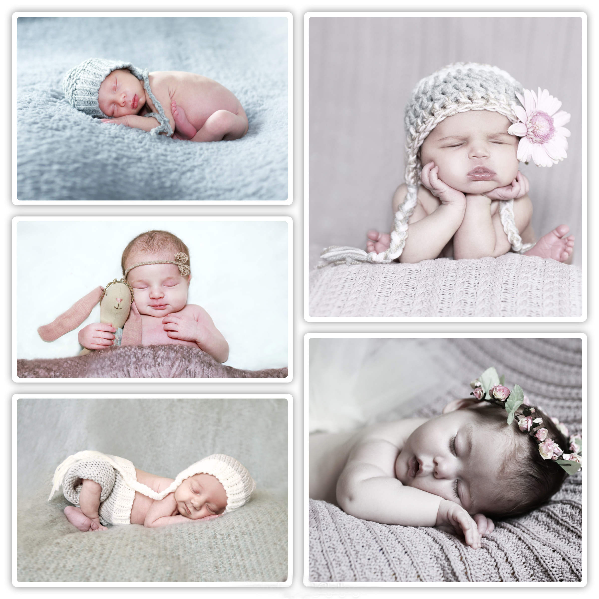 Collage of newborn baby photographs around Kent